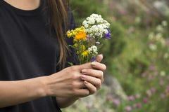 Wildflowers hermosos en manos Fotos de archivo