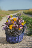 Wildflowers im Korb Ein Blumenstrauß von verschiedenen Blumen im Korb auf einem Feldweg getont Lizenzfreie Stockbilder