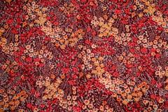Wildflowers, jaskrawy kolor Obrazy Royalty Free