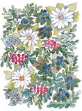 Wildflowers, leaves and berries. Black contour, watercolor paint. Hand drawing, floral print.  Illustration for wedding invitation