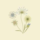 Wildflowers lokalisiert auf einem kreativen Vektorelement der hellen Hintergrundkunst für Design Stockfoto