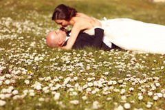 Wildflowers met bruid en bruidegom zoals silhouetten Stock Foto