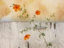Wildflowers-noch Leben Lizenzfreie Stockbilder