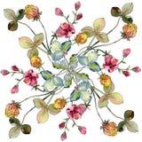 Wildflowers print floral botanical flower. Watercolor background illustration set. Background pattern.