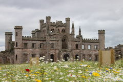 Wildflowers przy Lowther kasztelem Zdjęcia Royalty Free