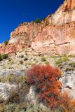 Wildflowers and Rocky Cliffs of Utah Stock Image