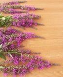 Wildflowers rosados en fondo de madera Imágenes de archivo libres de regalías