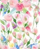 Wildflowers rouges, bleus, pourpres et jaunes de bel été coloré floral élégant mignon sensible tendre de ressort et roses roses a Image libre de droits