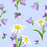 Wildflowers seamless Stock Images