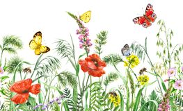 Wildflowers  Seamless Horizontal Border. Hand drawn floral horizontal seamless border with watercolor wildflowers, red poppies, bees and butterflies. Summer Stock Images