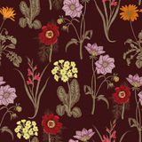 Wildflowers. Seamless vector background. Background for fabric, wallpaper and much more. Royalty Free Stock Image