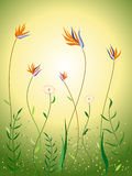 Wildflowers in spring scene. Illustration of vivid wildflowers dancing in spring scene Stock Images
