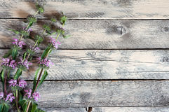 Wildflowers sur la table en bois Images stock