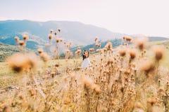 Wildflowers sur le fond brouillé - marié et jeune mariée marchant dans le pré Images libres de droits