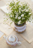 Wildflowers on the table. Outddor Stock Image