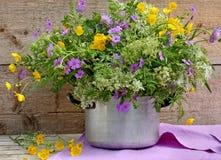 Wildflowers variopinti in POT Immagini Stock Libere da Diritti