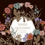 Wildflowers. Vector illustration in vintage style. Festive postcard. Botanical drawing Royalty Free Stock Photography