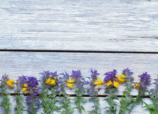 Wildflowers on a wooden surface.the. Unpretentious rustic background.toned Royalty Free Stock Photo