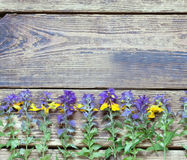 Wildflowers on a wooden surface.the Royalty Free Stock Image