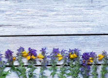 Wildflowers on a wooden surface.the Royalty Free Stock Photo
