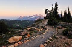 Wildflowers y rango de montaña del tatoosh en la puesta del sol Fotografía de archivo