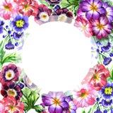 Wildflowerviola-Blumenrahmen in einer Aquarellart lokalisiert Lizenzfreie Stockfotos