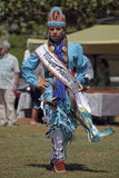 Wildhorseprinses Royalty-vrije Stock Fotografie