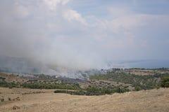 Wildlandbrand på bergen arkivbild