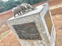 wildlife foto de stock royalty free