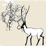 Wildlife. Hand drawing picture, vector - wildlife Stock Photos