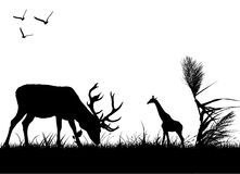 Wildlife. Farm animal silhouette  illustration vector Royalty Free Stock Photos