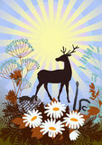 Wildlife. Deer, ferret, snake, prairie flowers and grasses on the background of the sun Royalty Free Stock Photography