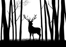wildlife бесплатная иллюстрация