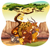 wildlife royalty-vrije illustratie