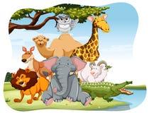 wildlife vector illustratie