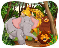 wildlife иллюстрация штока