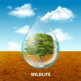 Wildlife Advertising Poster. With green tree  inside giant water drop on rustic landscape  background realistic vector illustration Stock Photos