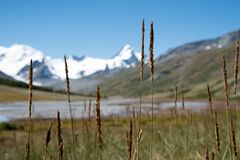 Wildlife Altai. The river, mountains and sky with clouds in summ Royalty Free Stock Photos