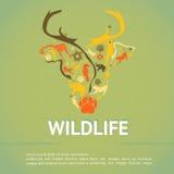 Wildlife animal infographic template layout badge background Stock Photos