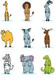 Wildlife Animal Set. Set of 9 wildlife animals Stock Photos