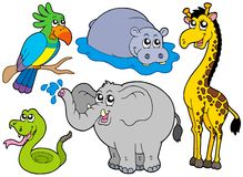 Wildlife animals collection. Vector illustration Royalty Free Stock Image