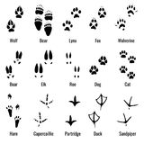 Wildlife animals, reptiles and birds footprint, animal paw prints vector set. Footprints of variety of animals, illustration of black silhouette footprints Stock Images