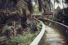 Wildlife in Bali Royalty Free Stock Image