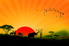 Wildlife of colorful africa landscape illustration Stock Photo