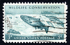 Wildlife Conservation US Postage Stamp Stock Photos