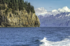 Wildlife Cruise around Resurrection Bay. In Alaska Stock Photos