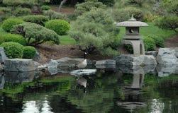 Wildlife and japenese garden Stock Photo