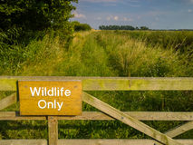 Wildlife Only Nature Reserve Stock Photos