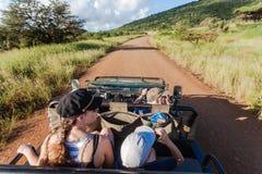 Wildlife Onboard Vehicle Spotting Stock Photo