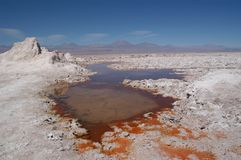 Orange water in Atacama desert royalty free stock photography